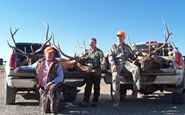 Colorado Elk Hunts, Antelope & Mule Hunts | Palmer Outfitters